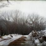 Perduta neve