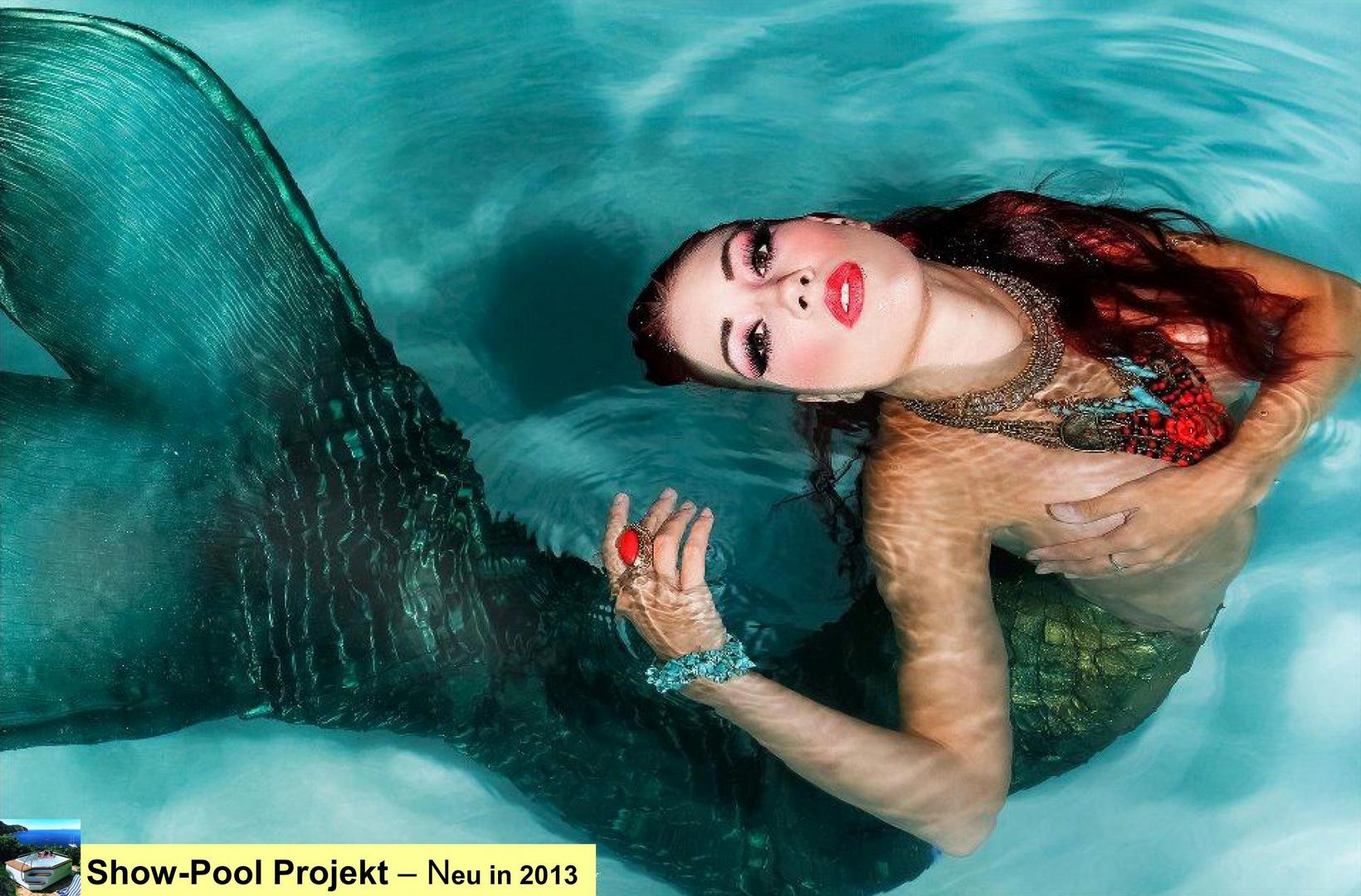 Performance - Mermaid