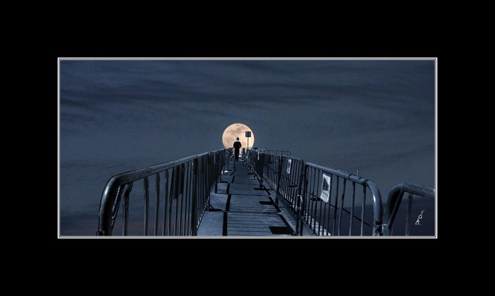 Perito en luna