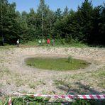 Perlacher Forst #1 - Feuchtbiotop in statu nascendi