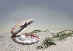 Perle am Strand