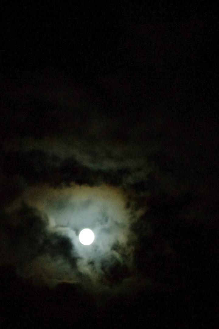 Perle de nuit