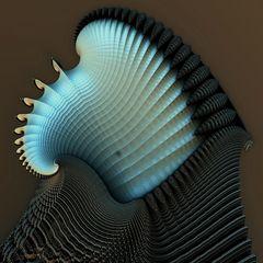 Perlmutt – Muscheln