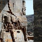 Persepolis 02