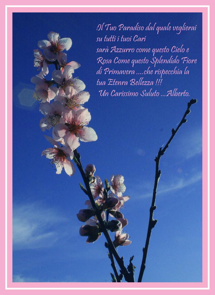 .......Persone che Non si Dimenticano .... Ciao Ilaria .....