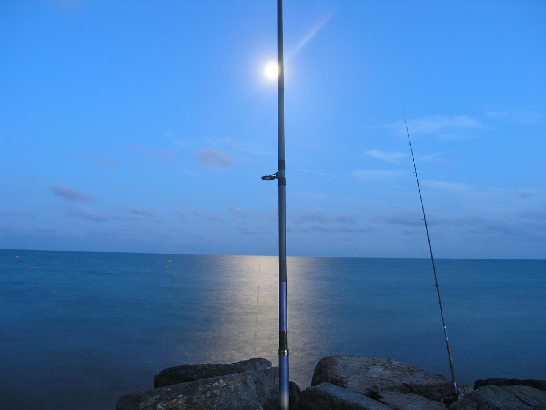 Pesca bajo la luna