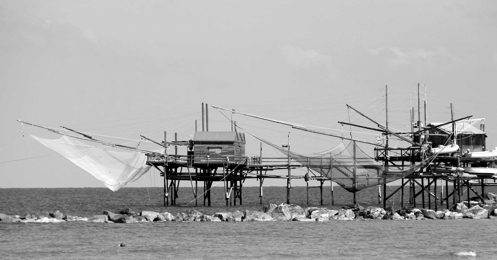pesca dal porto