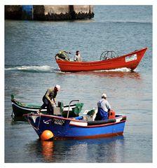 Pesca in Fiume Tejo Portogallo