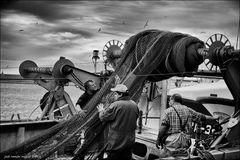 Pescadores en puerto