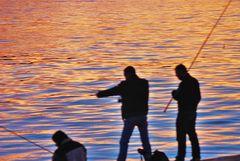 pescando al anochecer,, ( vigo )