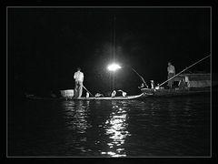 Pescando con Cormorán
