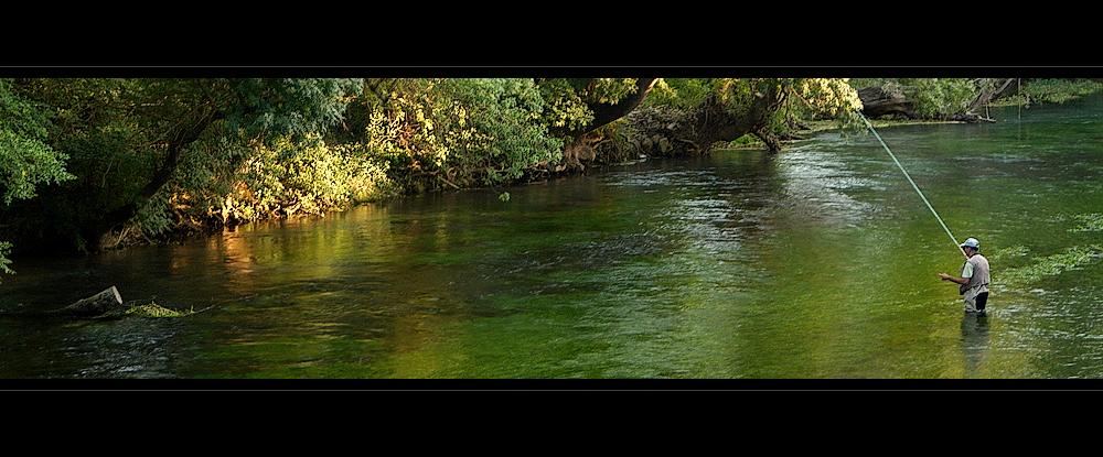 - pescando tranquilidad -