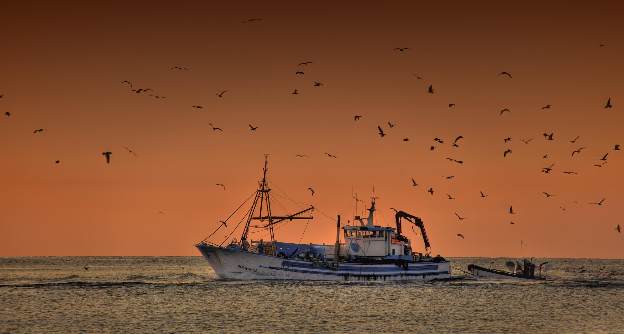 Pescant