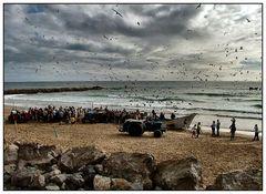 Pescatori Costa de Caparica Portogallo