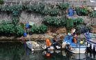 Pescatori - Pozzuoli