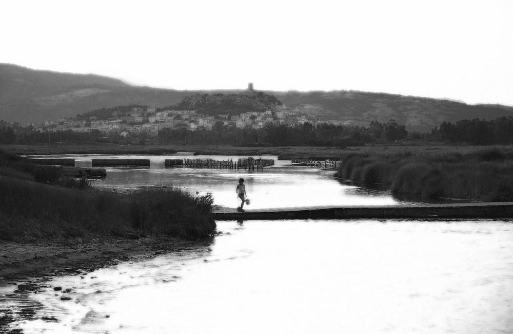 pescatrice di telline