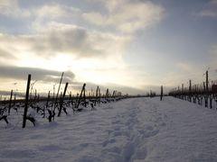 Peseux et la neige