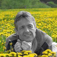 Peter Stein