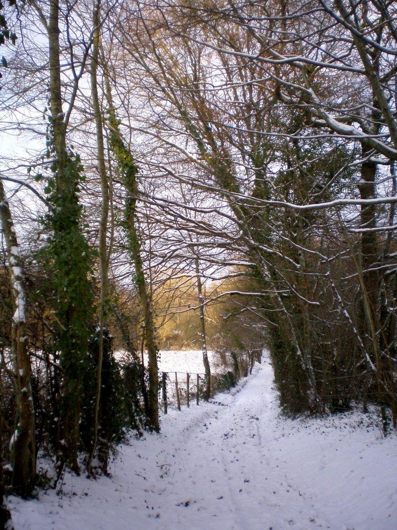 petit chemin enneigé