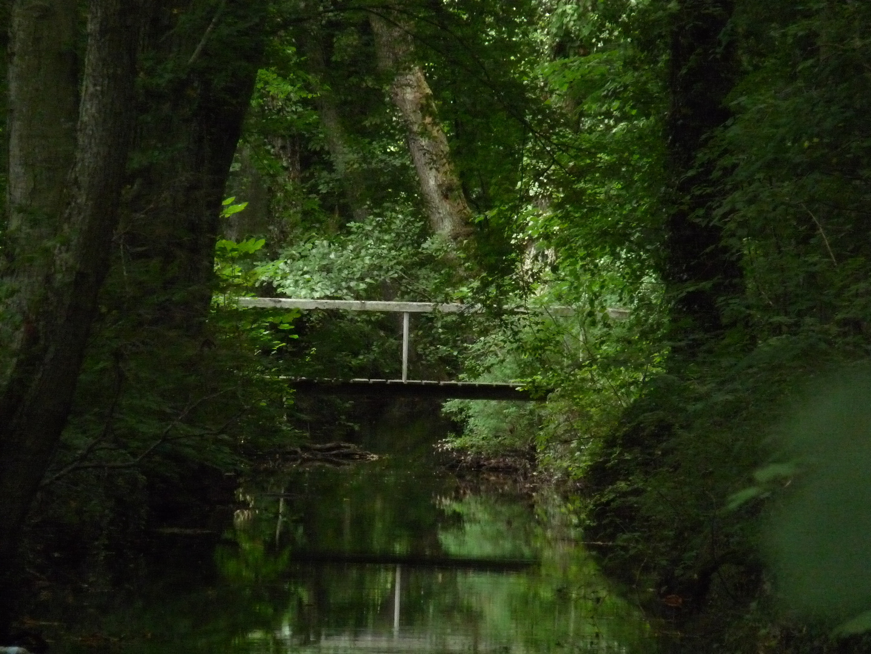 petit pont sur la vingeanne