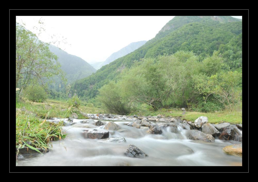 petit ruisseau des pyrenées