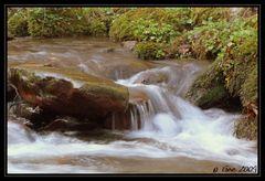 Petit ruisseau du Pays Basque (Aézaguerria)