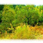 Petit tableau d'automne
