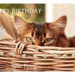 Petra hat Geburtstag