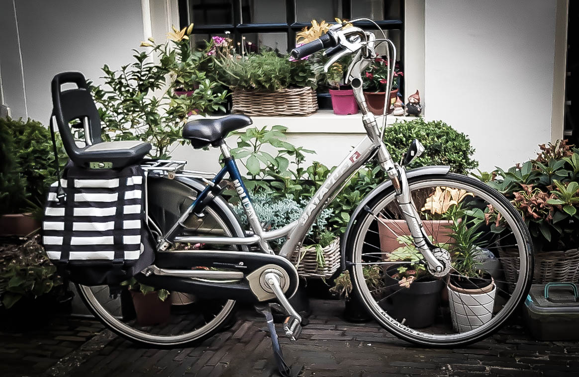 Petruta's bike