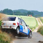 Peugeot 205 Rallye!!!!! Vol. 2...