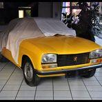 Peugeot im Winterschlaf ...