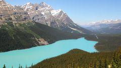 Peyto Lake - das wohl am meisten fotografierte und gezeigte Motiv der Kanandischen Rocky Mountains