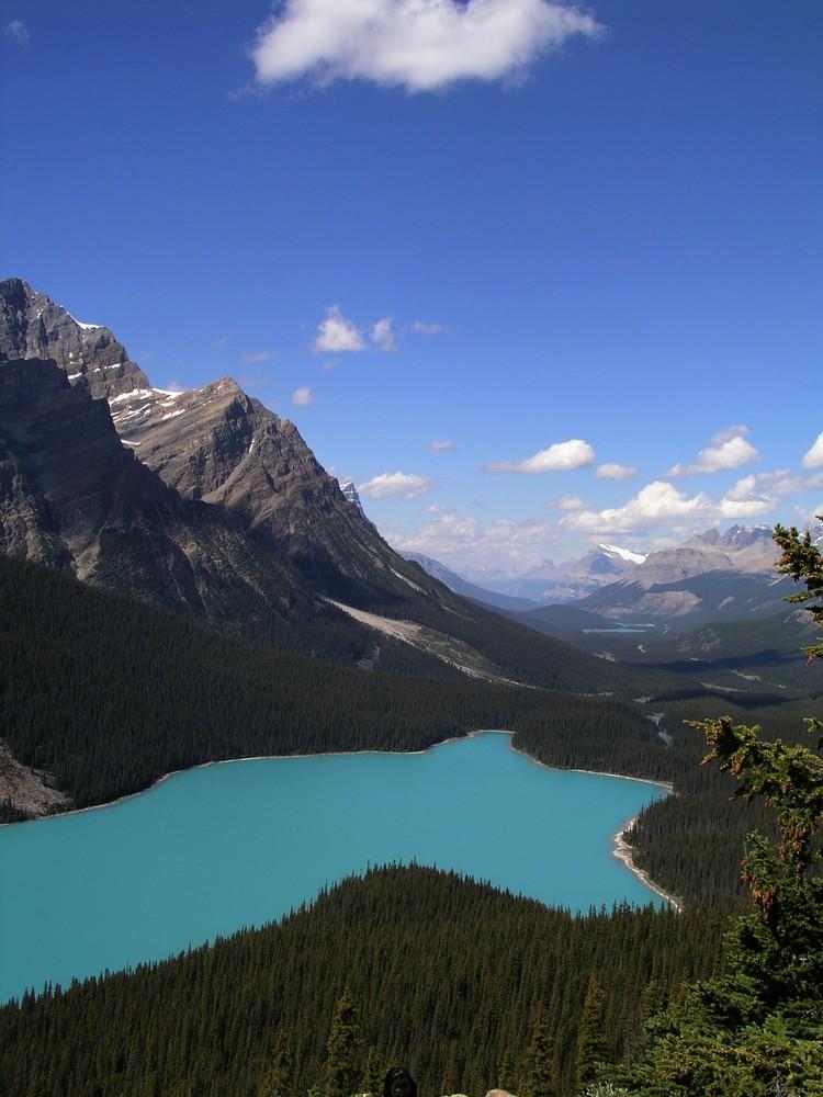 Peyto Lake - Kanada