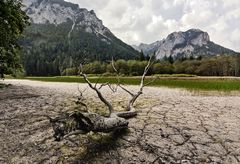 Pfarrerlacke am Grünen See