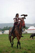 Pferd und Falke