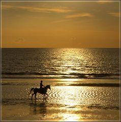 Pferd und Reiter - gemeinsam geniessen...