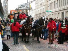 Pferde bei der Fasnacht in Basel | 2