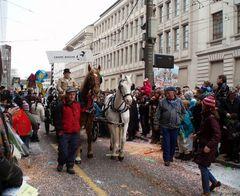 Pferde bei der Fasnacht in Basel | 3