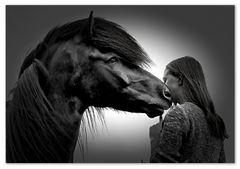 Pferde und Mädchen