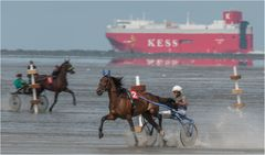 Pferde und schiffe