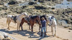 Pferdeauszeit der besonderen Art