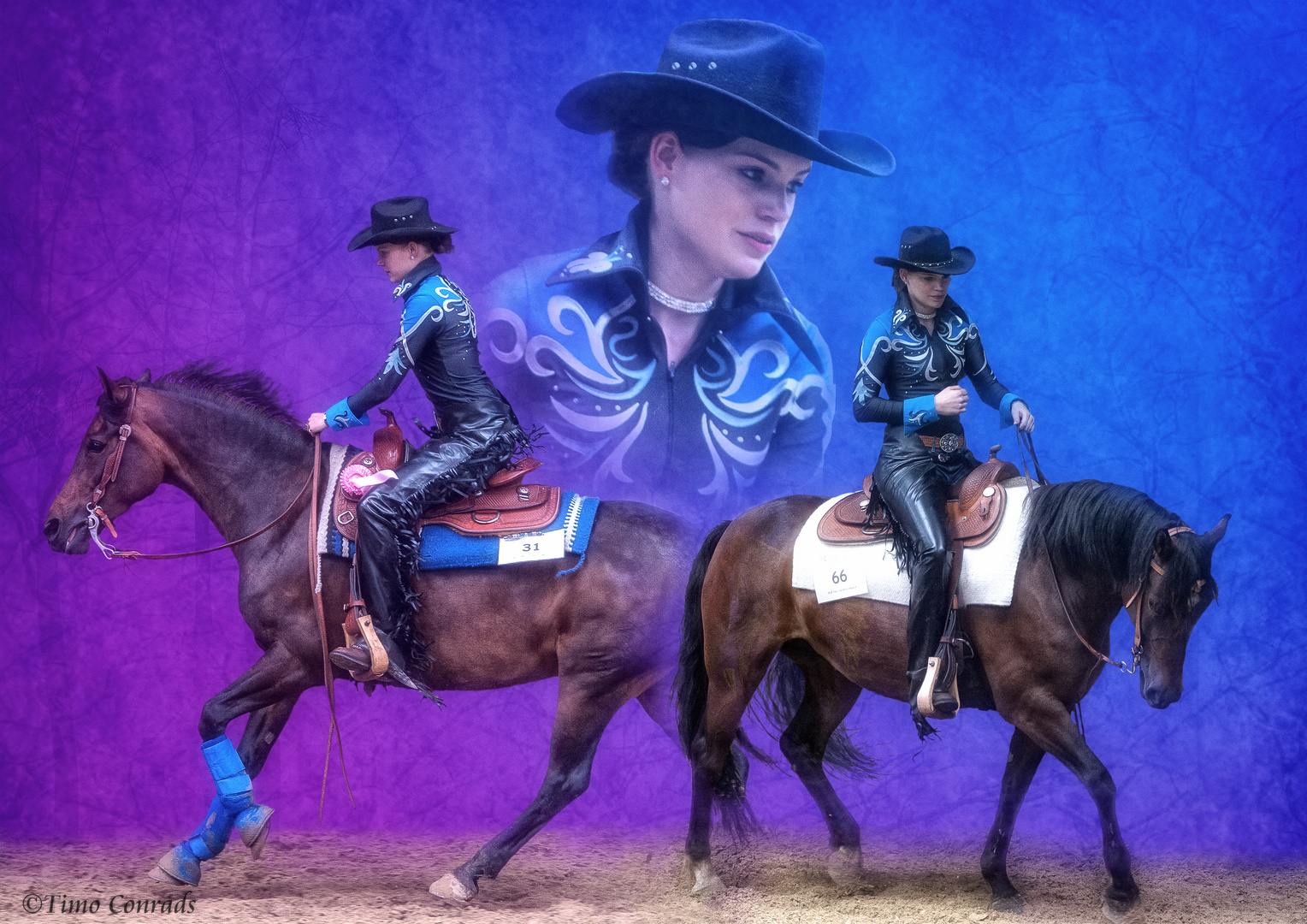 Pferdecollage IV