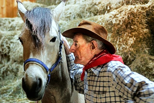 Pferdeflüstern