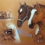 Pferdefreundschaft - (gezeichnet)
