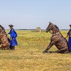 Pferdehirten in der Puszta