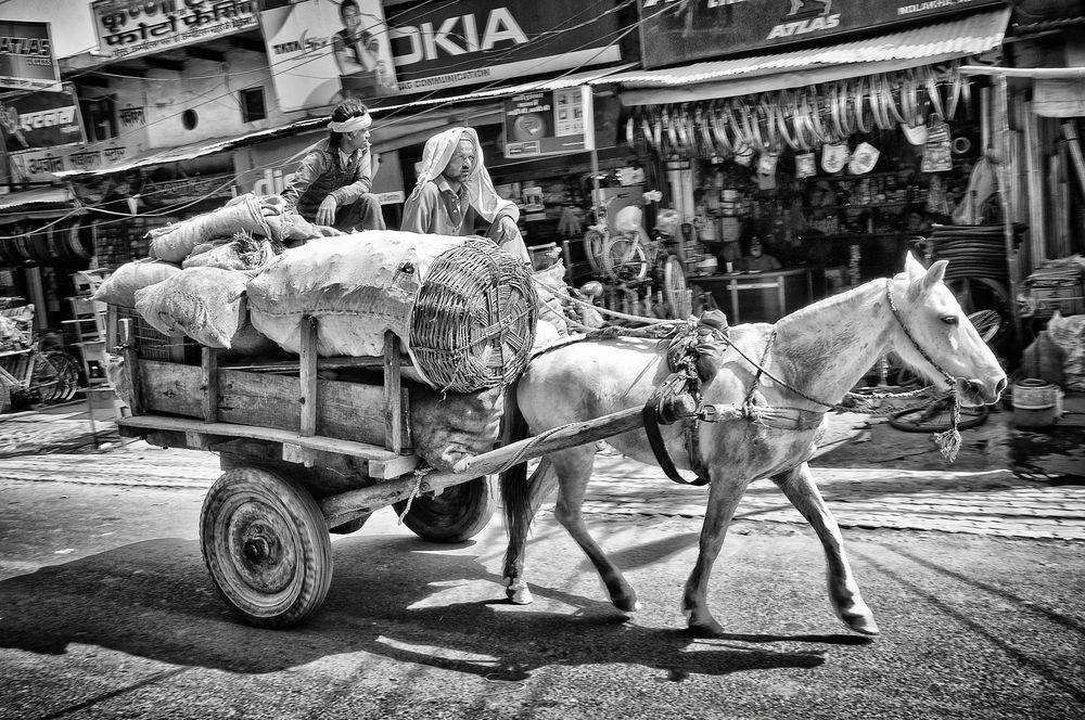 Pferdekarren in Indien