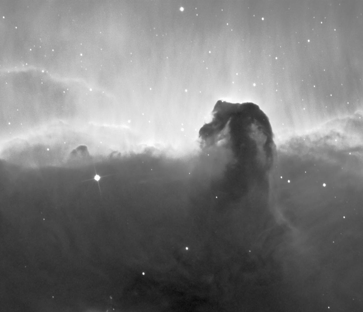 Pferdekopf Nebel
