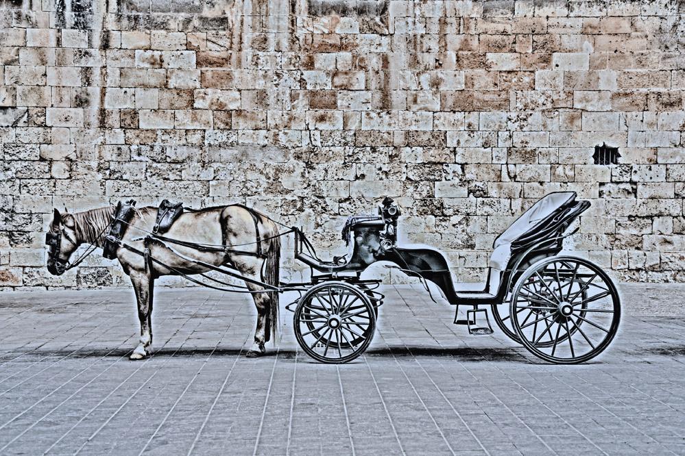 pferdekutsche vor der kathedrale in palma , hdr