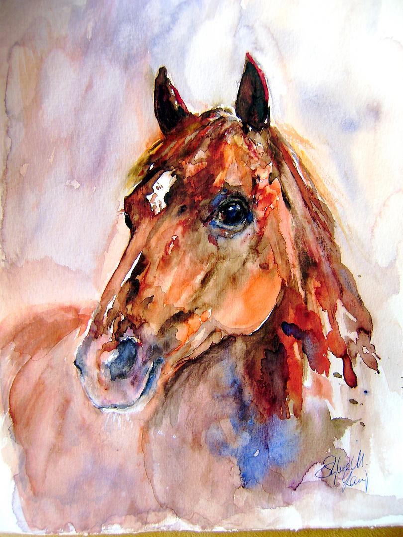 Pferdeportrait in kupfer und blau