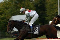 Pferderennen in Hannover/Langenhagen...